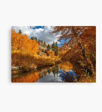 Susan River Reflections Canvas Print