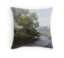 Badfish Creek Near Cooksville Throw Pillow