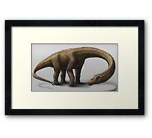 Dreadnoughtus schrani Framed Print