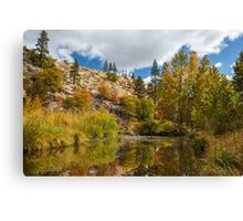 Susan River 10-25-12 Canvas Print