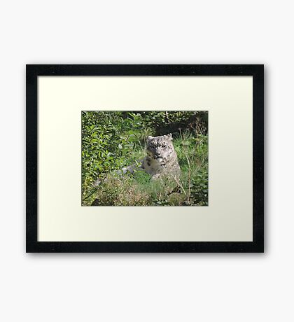 In Love There Is No Because Framed Print
