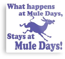 Mule Day Metal Print