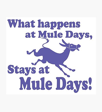 Mule Day Photographic Print