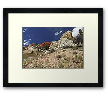 Springtime At Red Rock Canyon Framed Print