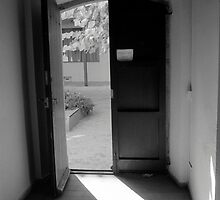 A Door to the Light by James2001