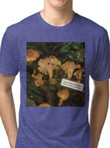 Chanty Town Tri-blend T-Shirt