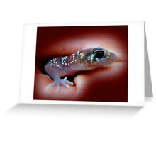 Fat-tailed Gecko Greeting Card