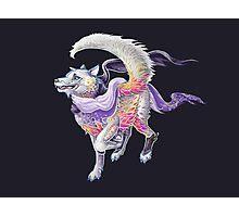 Featherfloof - Husky / Phoenix hybrid Photographic Print