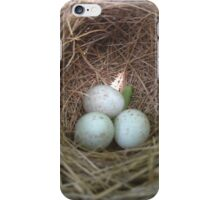 NestUp iPhone Case/Skin