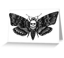 Resonating Powder Moth Greeting Card