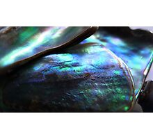 Abalone Landscape Photographic Print