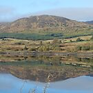Clatteringshaws Loch -Dumfries & Galloway, Scotland by sarnia2