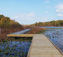 Punderson Boardwalk by Monnie Ryan