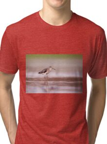 Common redshank (Tringa totanus) hunting for food in shallow water.  Tri-blend T-Shirt