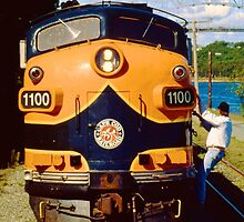 Cape Cod Railroad by Bill Wetmore