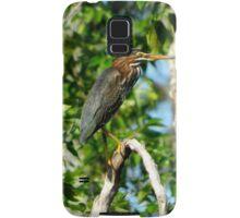 Green Heron on the Scuppernong Samsung Galaxy Case/Skin