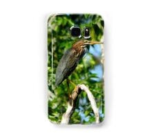 Green Heron on the Scuppernong Samsung Galaxy Case/Skin