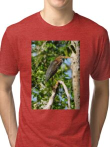 Green Heron on the Scuppernong Tri-blend T-Shirt