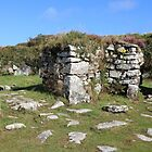 Chysauster Walls by kalaryder