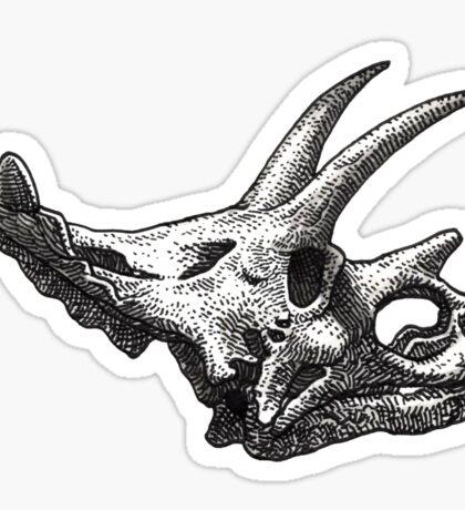 Anchiceratops Sticker