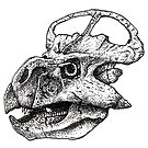 Protoceratops by SharpSticks