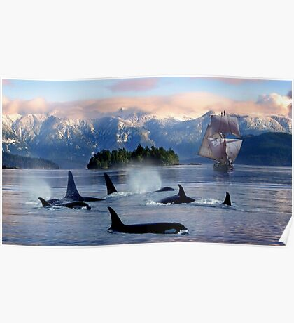 Sail With Sea Wolfs Poster