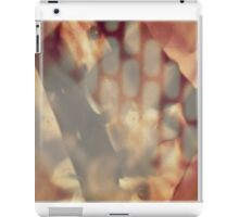 The Source iPad Case/Skin