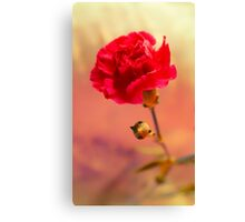 Floral Layers of Red Canvas Print