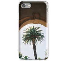 Palm Trees and Architecture iPhone Case/Skin