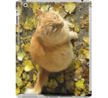 Where's Them Tweets? iPad Case/Skin