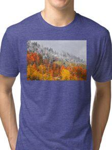 Fall to Winter Tri-blend T-Shirt