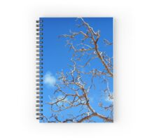 Clawing for the sky Spiral Notebook