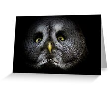 a great gray owl Greeting Card