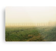 fields in the fog in winter Metal Print