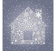 Snowflake the house Photographic Print