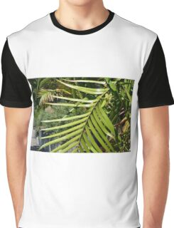 Tropical background with large green palm branch Graphic T-Shirt