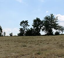 countryside landscape with hay by spetenfia