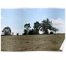 countryside landscape with hay Poster