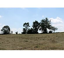 countryside landscape with hay Photographic Print