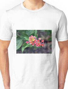 Small delicate flowers, natural backround Unisex T-Shirt