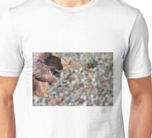 Autumn background in brown tones with dry leaf Unisex T-Shirt