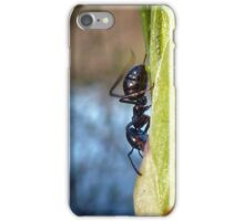 busy ant iPhone Case/Skin