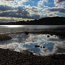 Lake Macquarie, Warners Bay, NSW by Sharon Brown