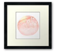Ball of Pink  Framed Print