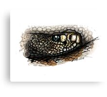 Rattlesnake in color Canvas Print