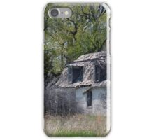 Summer Cottage iPhone Case/Skin