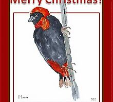 A Red Bishop Merry Christmas to you! by Maree Clarkson
