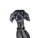 ITALIAN GREYHOUND d923 by Hares & Critters