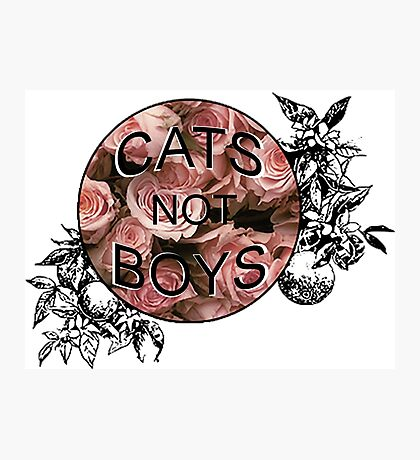 Cats Not Boys Photographic Print