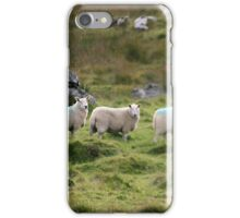Irish sheep iPhone Case/Skin